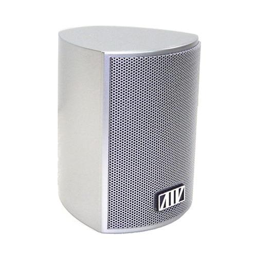 ANV【環繞喇叭】捷登3吋全音域喇叭(L-3002SS)一個