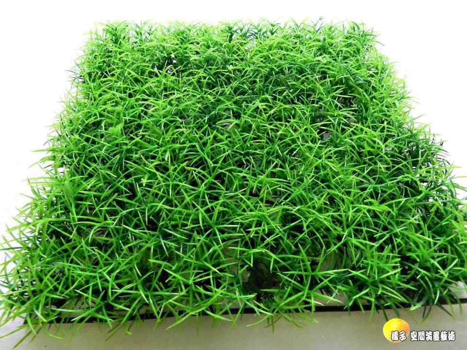 水竹假草皮.人造草皮.牆壁裝飾草皮.仿真草皮.室外腳踏墊 [ 約25*25cm ]