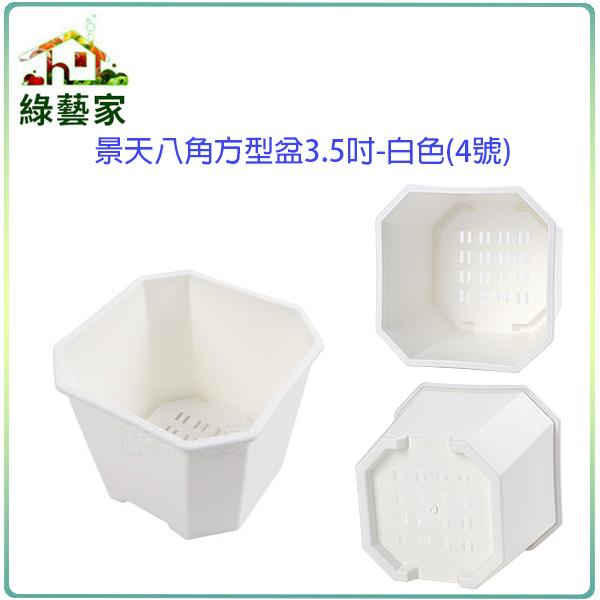 【綠藝家】景天八角方型盆3.5吋-白色(4號)