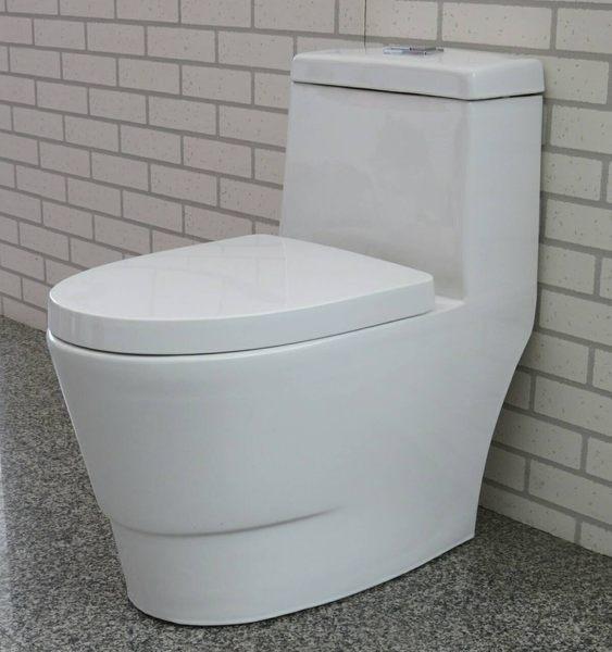 【麗室衛浴】國產精品  C-130 6 雙龍捲單體馬桶