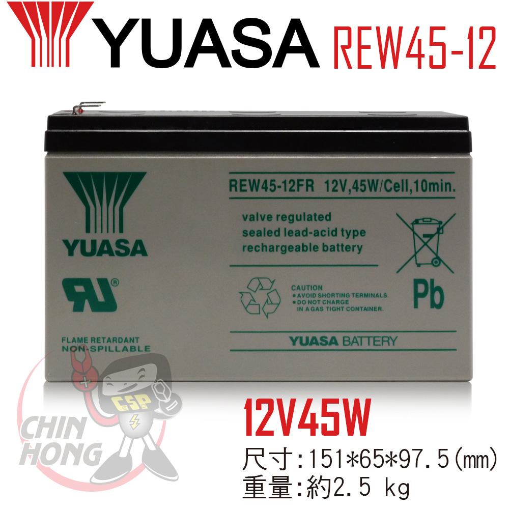 YUASA湯淺REW45-12玩具電動車哪裡買兒童電動玩具車配件