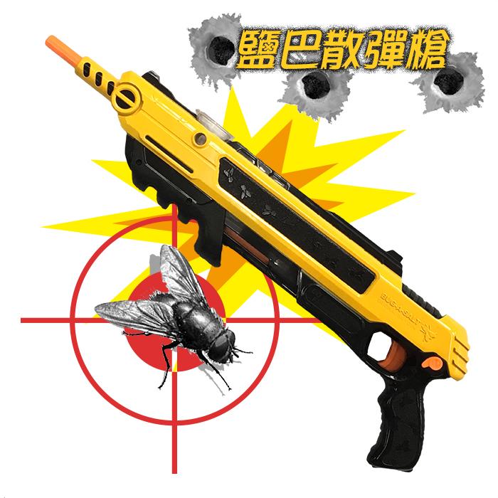 葉子小舖鹽巴散彈槍打蒼蠅玩具環保滅蚊玩具槍整人兒童玩具食鹽槍戶外娛樂