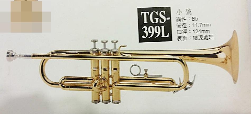 小號 (喇叭、TRUMPET ) Chateau 俠道 TGS-398L 中級箱