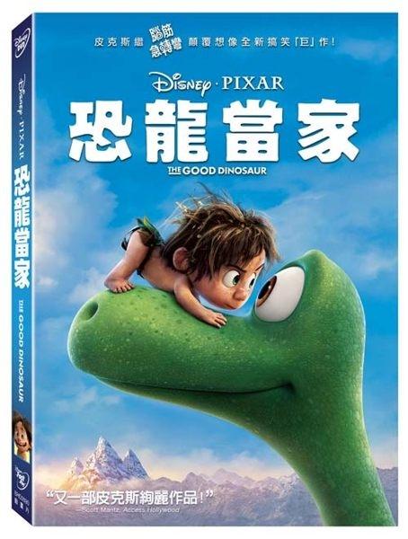 恐龍當家DVD購潮8