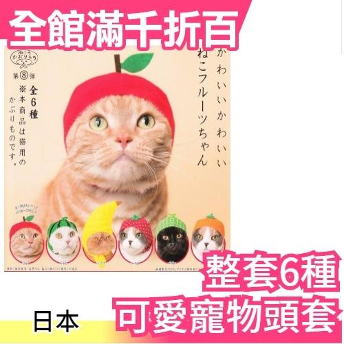 小福部屋水果貓咪日本可愛寵物頭套整套6種扭蛋轉蛋療癒交換禮物新品上架