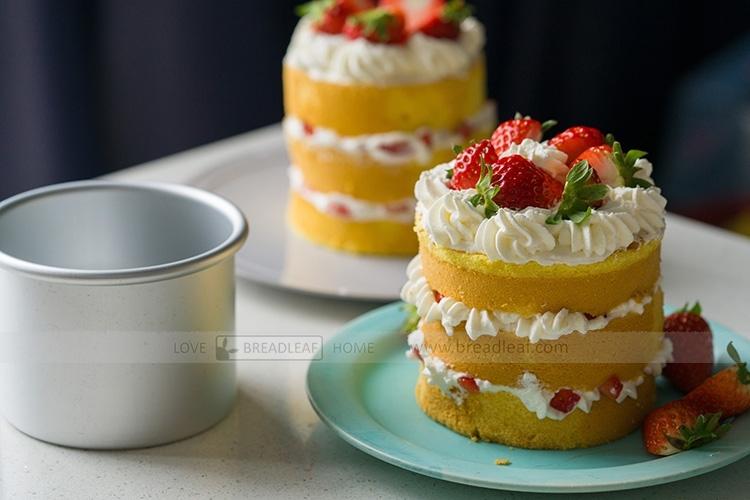 BreadLeaf 4吋陽極活底蛋糕模具圓形戚風蛋糕模烘焙模具麵包模海綿蛋糕模布丁模麵包模