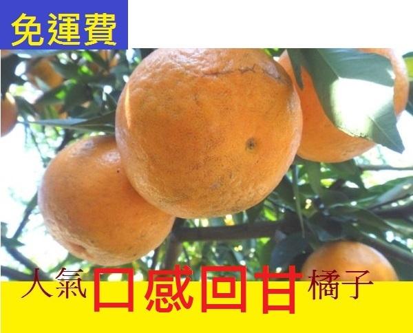 最早橘子最香的 佛利蒙柑★10月水果花蓮無毒農業 8斤 橘子福柑 雙11禮盒