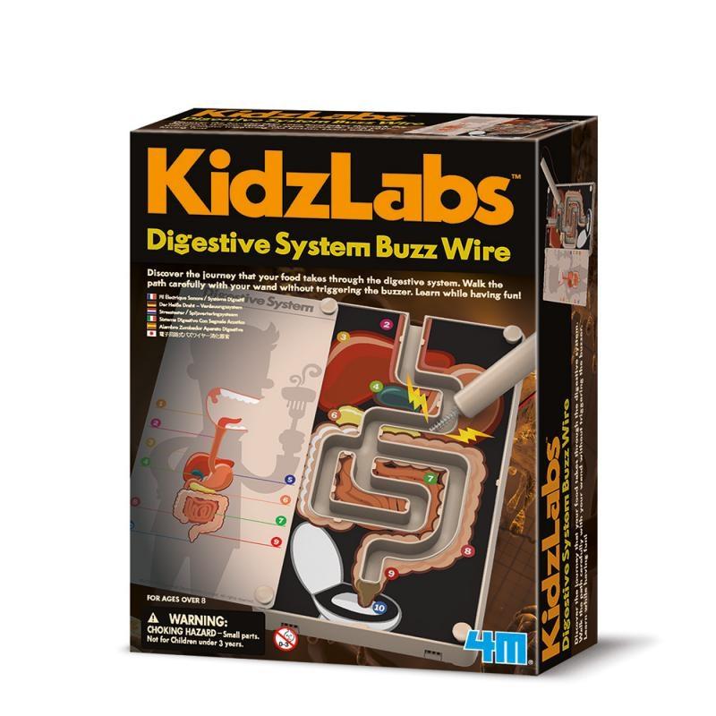 《4M科學探索》消化道的驚奇探險 Digestive System Buzz Wire╭★ JOYBUS玩具百貨