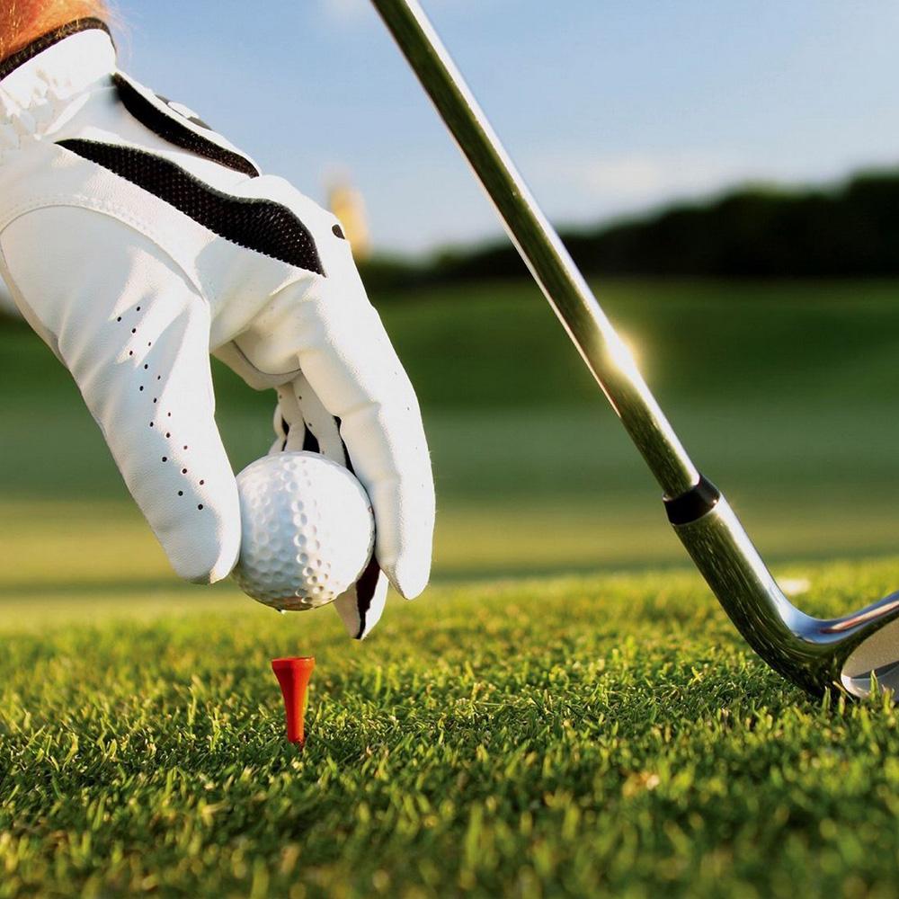 全新雙層比賽用球原裝高爾夫球.外銷訂單餘數NIKE  welson staff Dunlop DDH代工廠.可批發