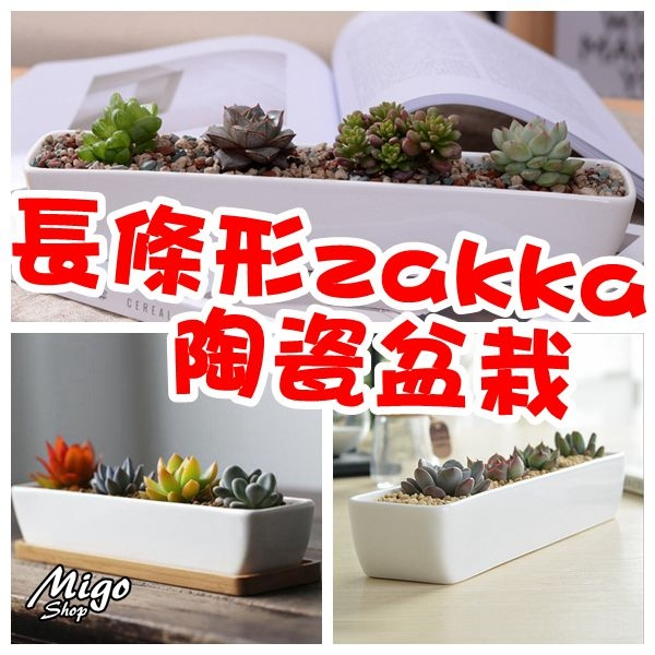 【長條形zakka陶瓷盆栽《白色/長28.2cm》】簡約白色創意長條形zakka盆栽陶瓷花盆