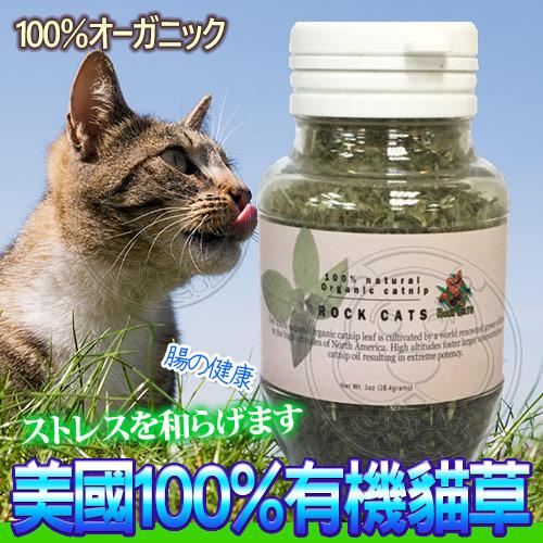【培菓平價寵物網】ROCK CATS》RC-110美國100%有機貓草-1oz/28.4g