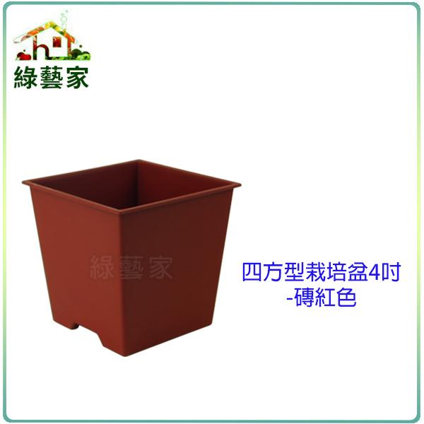 綠藝家005-D111-RE四方型栽培盆4吋-磚紅色厚