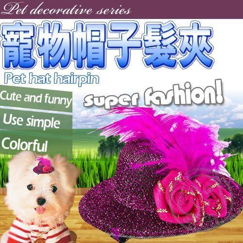 【培菓平價寵物網】時尚寵物帽子髮夾 (2入可選性別 顏色隨機出貨)