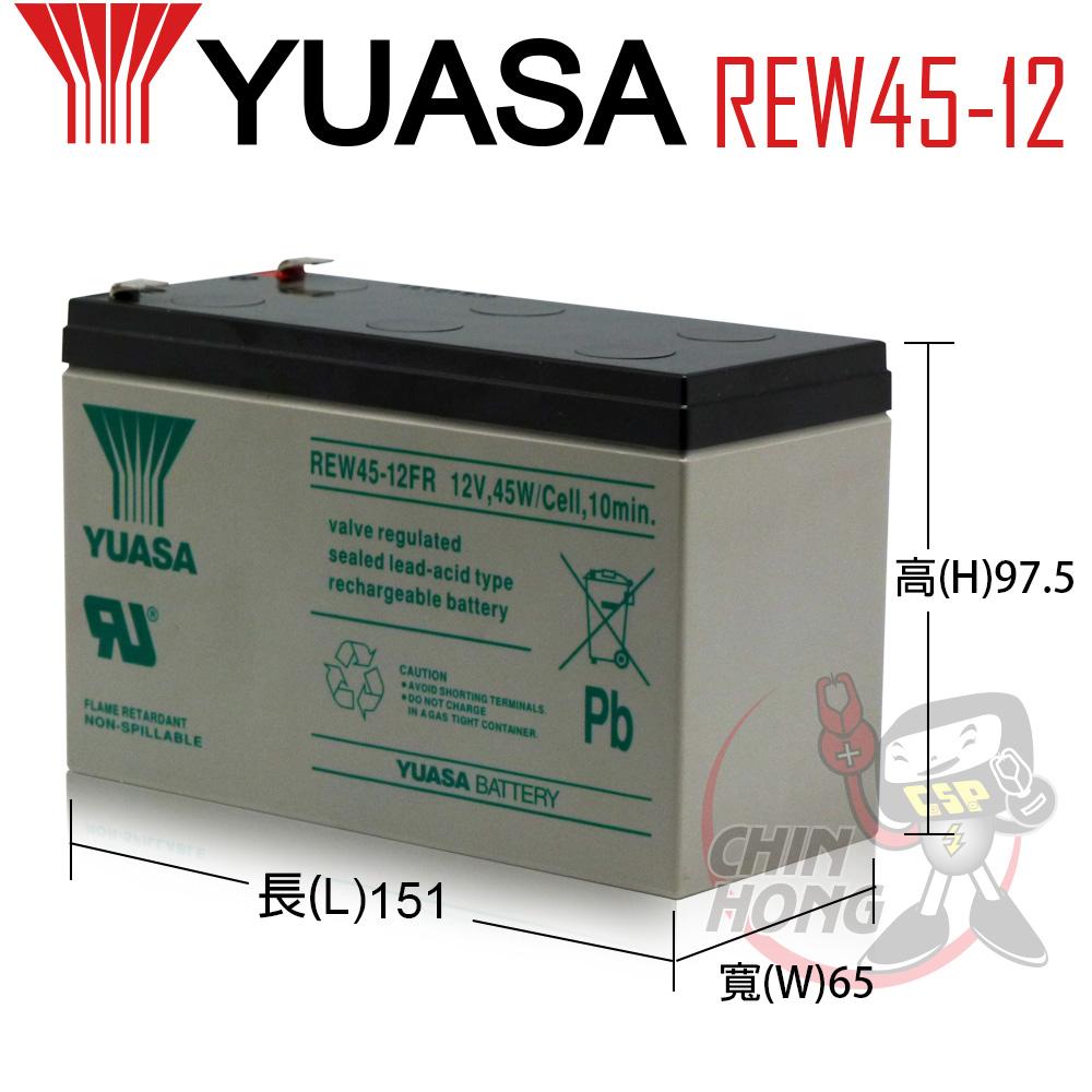YUASA湯淺REW45-12電動車哪裡賣兒童電動玩具車配件