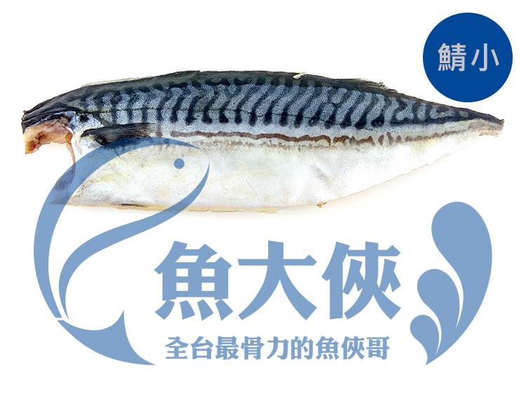 F1【魚大俠】FH153(營)挪威鯖魚片(110/140規格@鯖小)