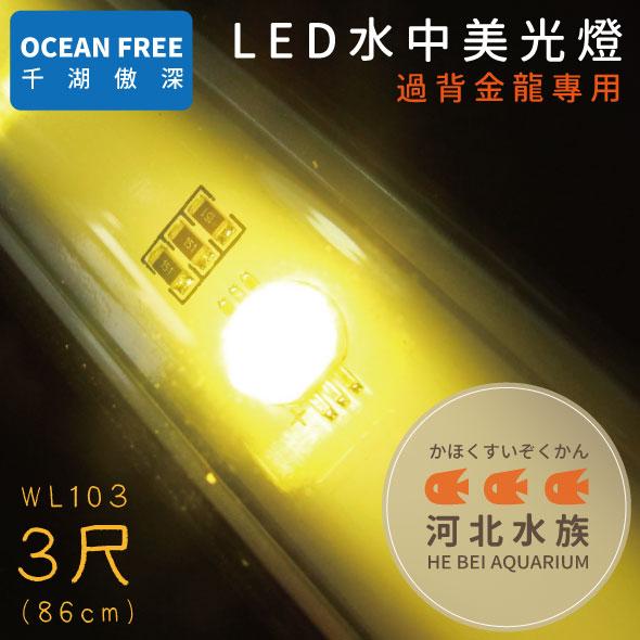 河北水族OF傲深LED水中美光燈過背金龍3尺86cm WL103 LED水中燈水中LED燈三尺