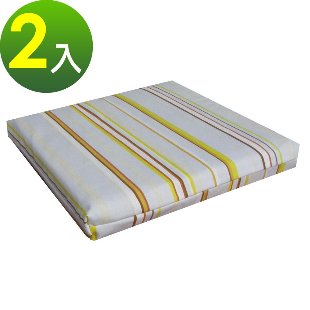 【小葉子-24 hours】(一組2入)[聚合記憶矽膠]40x40cm 和室坐墊.椅墊.沙發墊.靠墊---長春花圖騰