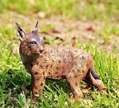 協貿國際野生動物恐龍模型玩具山貓