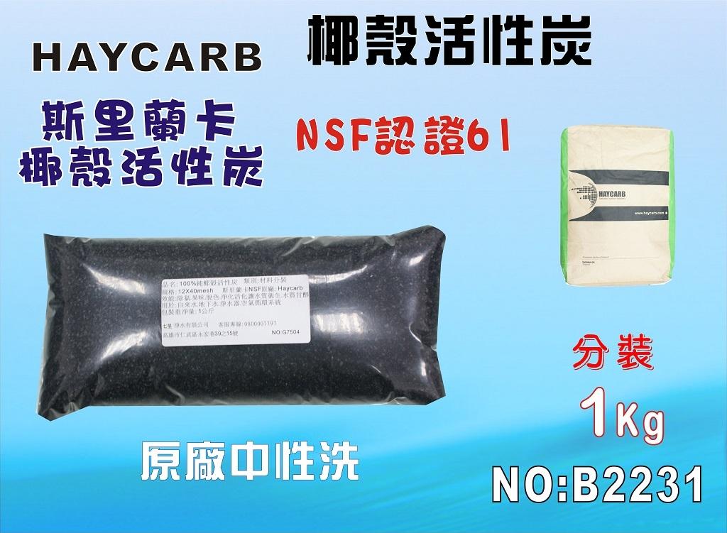 七星淨水100椰殼活性炭低炭粉1公斤淨水器原料濾水器FRP桶濾心填充貨號B2231