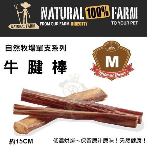 『寵喵樂旗艦店』自然牧場100%Natural Farm自然牧場單支系列《牛腱棒-M》犬用零食