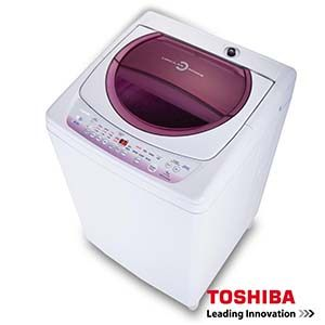 TOSHIBA(東芝)10公斤星鑽不鏽鋼槽洗衣機 AW-B1075G(WL)