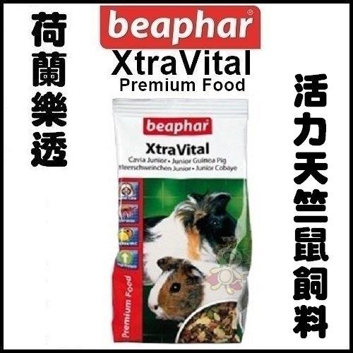 *KING WANG*荷蘭Xtravital樂透活力天竺鼠飼料2.5kg