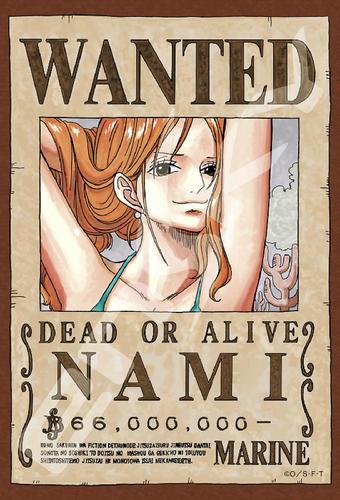 拼圖總動員PUZZLE STORY航海王新版懸賞單-娜美日本進口拼圖Ensky海賊王One Piece 150P迷你