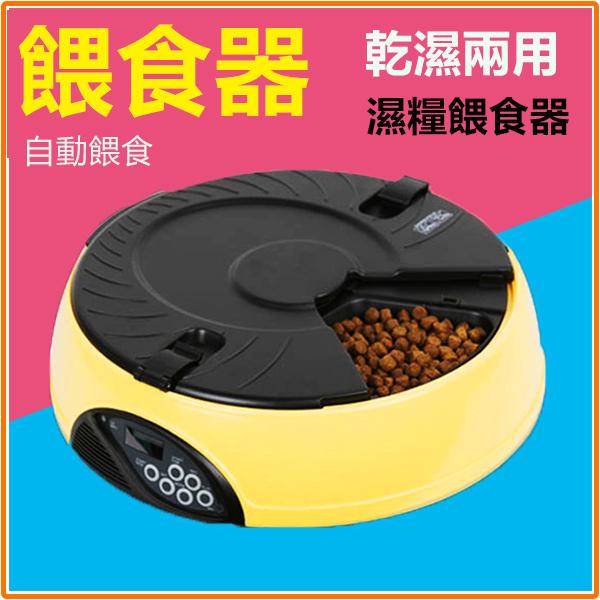 6餐4餐餵濕糧寵物自動餵食器狗狗定時餵食機貓咪殼泡餐食極品e世代