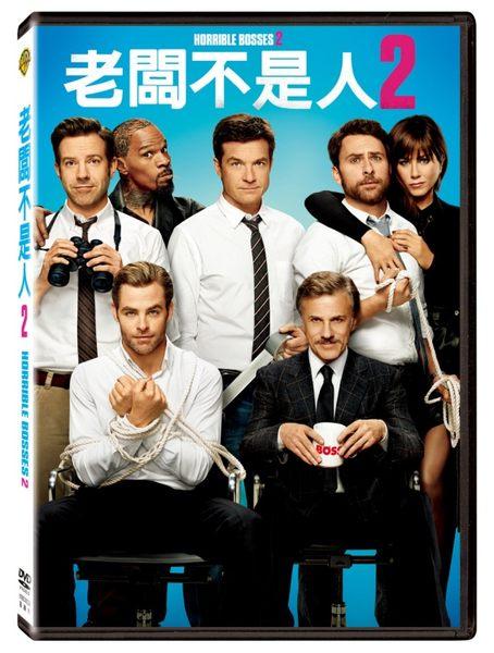 老闆不是人2 DVD音樂影片購