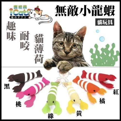 *KING WANG*2017新款!日本貓姬《貓草玩具-龍蝦造型》貓咪抱枕/貓草抱枕/貓玩具/貓草包