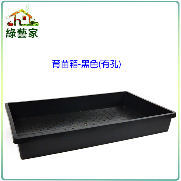 【綠藝家】育苗箱(有孔)-黑色(育苗盤.芽菜箱.可當四方型栽培盆端盤)