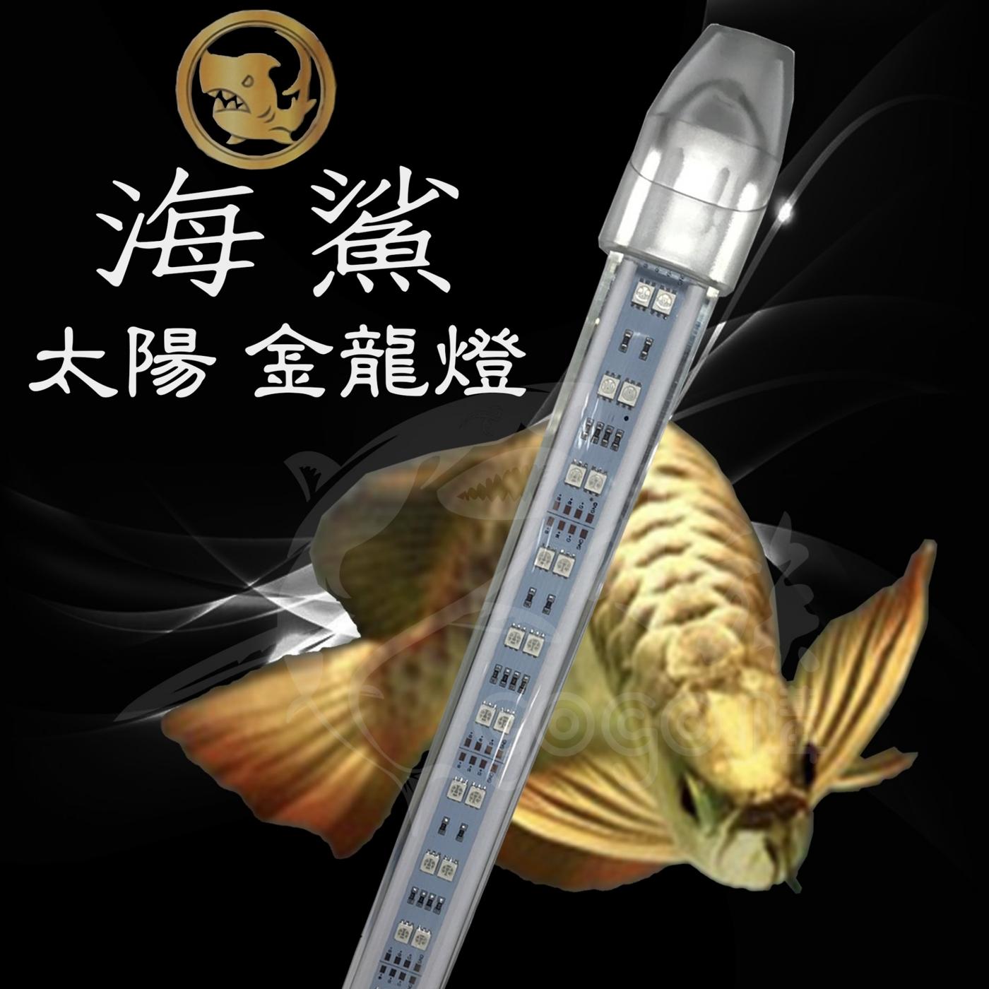 AQ王國海鯊太陽金龍燈6尺LED水中燈龍魚燈水晶防爆玻璃管