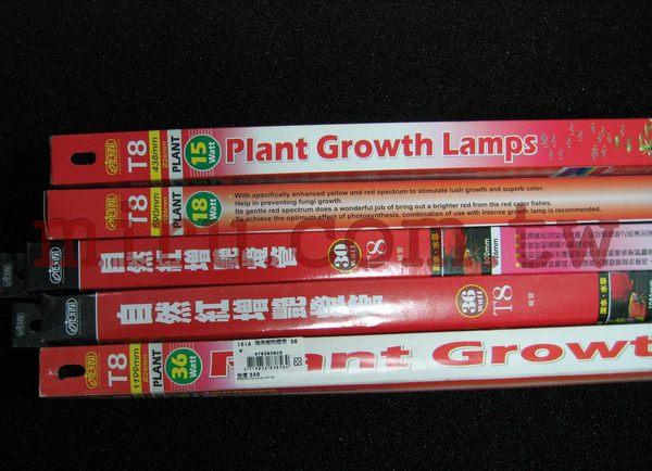 西高地水族坊ISTA伊士達T8強效植物燈管36W