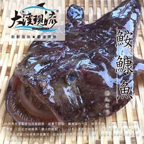 老饕首選極品 鮟鱇魚 ( 整小尾 300g±10% / 尾 )【大溪現流】