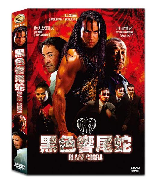 黑色響尾蛇DVD音樂影片購