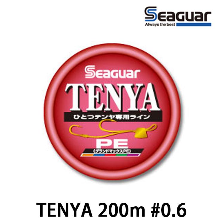 漁拓釣具 SEAGUAR TENYA 200M #0.6號 (PE線)