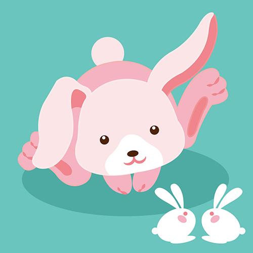 DR05512生肖兔