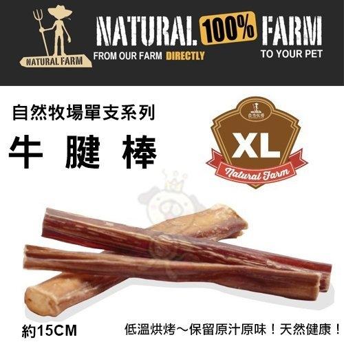 『寵喵樂旗艦店』自然牧場100%Natural Farm自然牧場單支系列《牛腱棒-XL》犬用零食