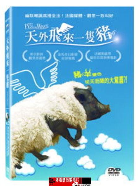 【停看聽音響唱片】【DVD】天外飛來一隻豬