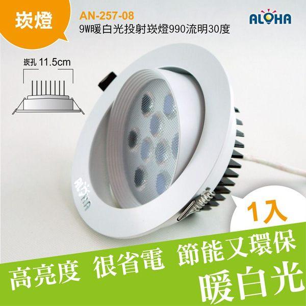 LED崁燈燈具9W暖白光投射崁燈990流明30度-崁孔11.5cm AN-257-08