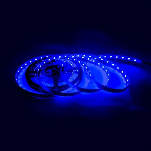 5050 300燈白底扁條燈5M藍*裸式不防水