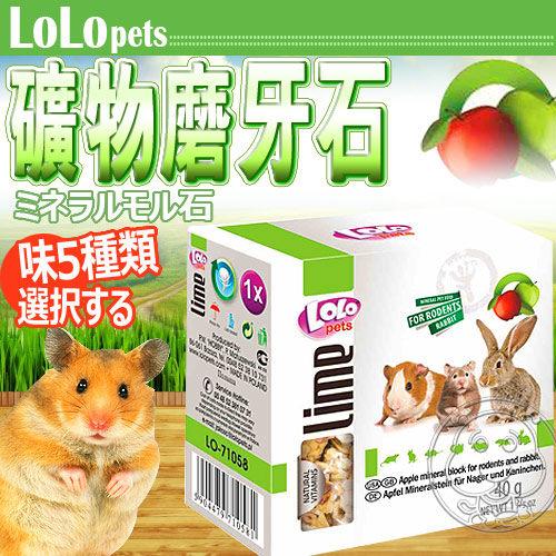 【培菓平價寵物網】波蘭LOLO》小動物礦物質磨牙石(5種口味)