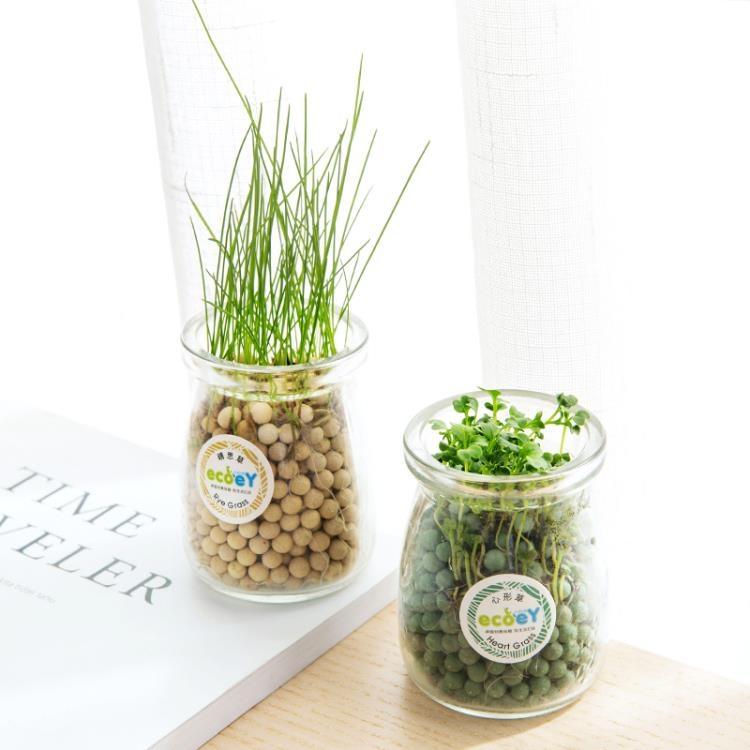 超豐國際水培盆栽創意辦公室DIY負離子小盆景桌面迷你可愛草微景觀小