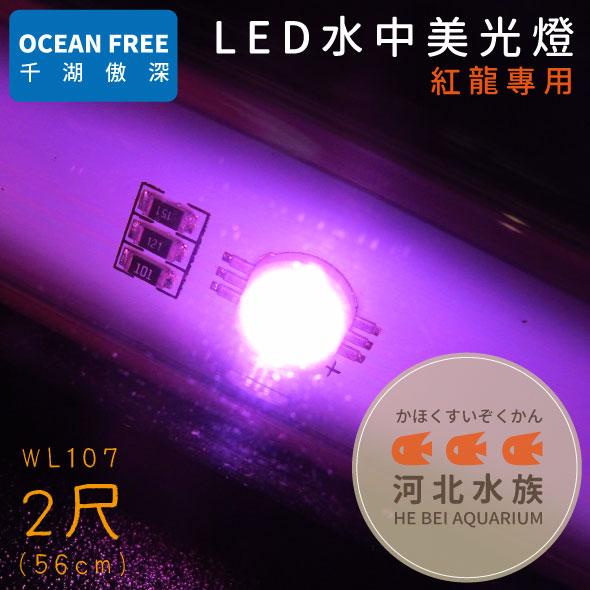 河北水族OF傲深LED水中美光燈紅龍2尺56cm WL107 LED水中燈水中LED燈二尺兩尺