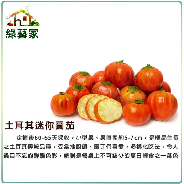 【綠藝家】G92.土耳其迷你茄種子10顆