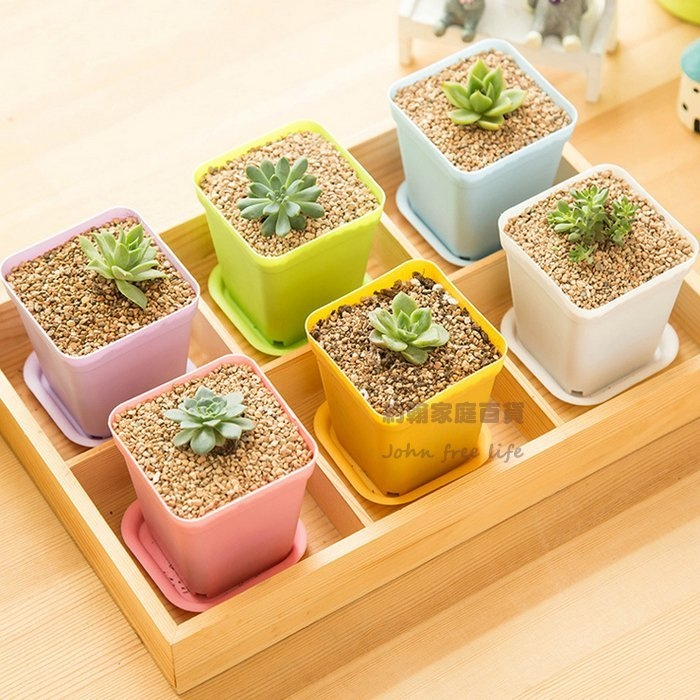 約翰家庭百貨XR040彩色方形迷你盆栽帶托盤多肉植物花盆辦公室居家擺飾隨機出貨