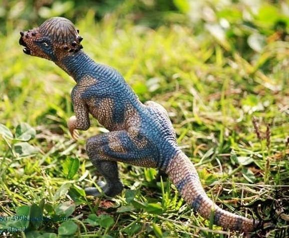 協貿國際侏羅紀世界公園恐龍模型玩具腫頭龍