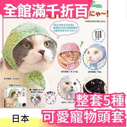 小福部屋頭巾貓咪日本可愛寵物頭套整套5種扭蛋轉蛋療癒交換禮物新品上架