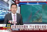 釣客拍到地震魚 巧!台東發生規模4.6地震