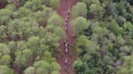 Elephants Move Seven Miles Into Woodland as Journey Continues Through China